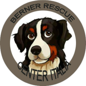 Berner Rescue Center Italia